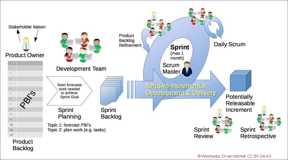 Management-Erfahrung wichtiger als IT-Fachkompetenz